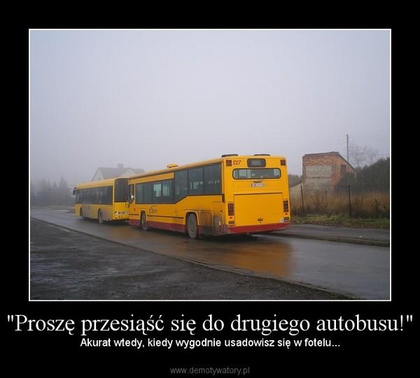 """""""Proszę przesiąść się do drugiego autobusu!"""" – Akurat wtedy, kiedy wygodnie usadowisz się w fotelu..."""