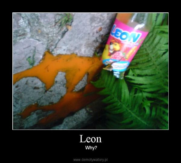 Leon –  Why?