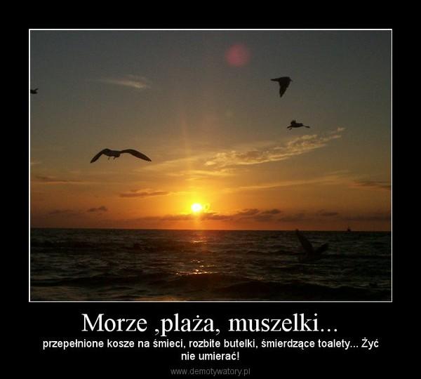 Morze ,plaża, muszelki... – przepełnione kosze na śmieci, rozbite butelki, śmierdzące toalety... Żyćnie umierać!