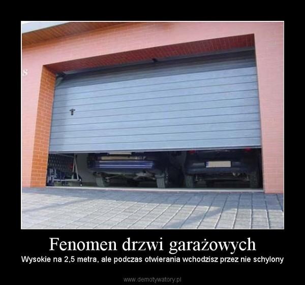Fenomen drzwi garażowych – Wysokie na 2,5 metra, ale podczas otwierania wchodzisz przez nie schylony