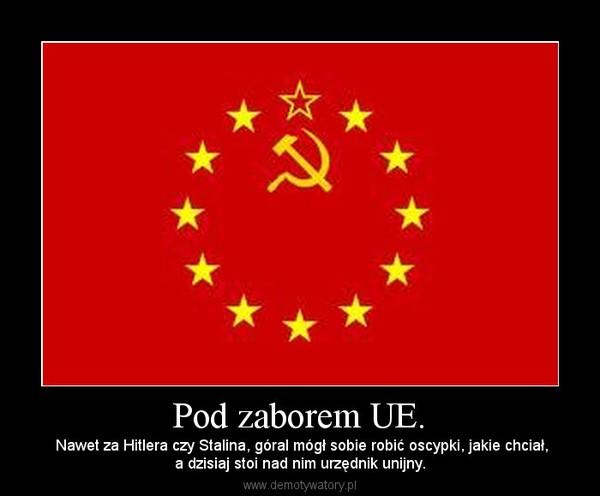 Pod zaborem UE. –  Nawet za Hitlera czy Stalina, góral mógł sobie robić oscypki, jakie chciał,a dzisiaj stoi nad nim urzędnik unijny.