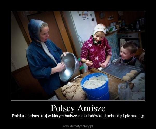 Polscy Amisze – Polska - jedyny kraj w którym Amisze mają lodówkę, kuchenkę i plazmę...;p