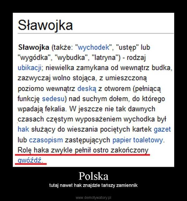 Polska – tutaj nawet hak znajdzie tańszy zamiennik
