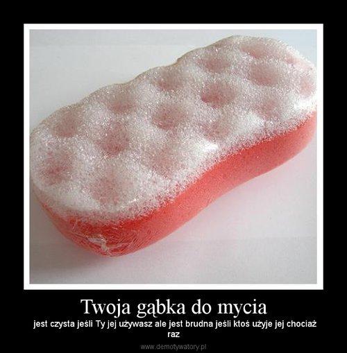 Twoja gąbka do mycia