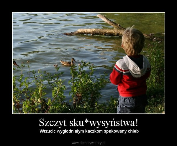 Szczyt sku*wysyństwa! – Wrzucic wygłodniałym kaczkom spakowany chleb