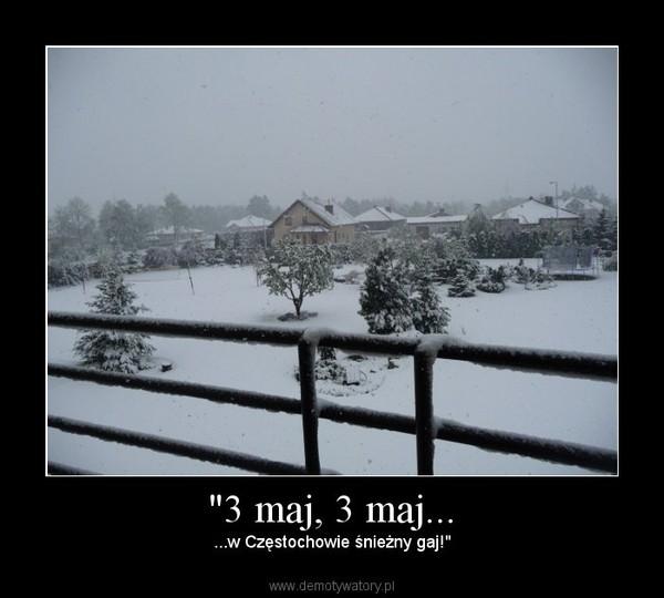 """""""3 maj, 3 maj... – ...w Częstochowie śnieżny gaj!"""""""