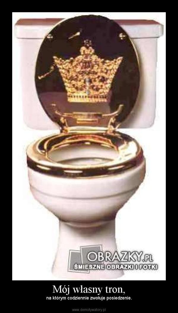 Mój własny tron, – na którym codziennie zwołuje posiedzenie.