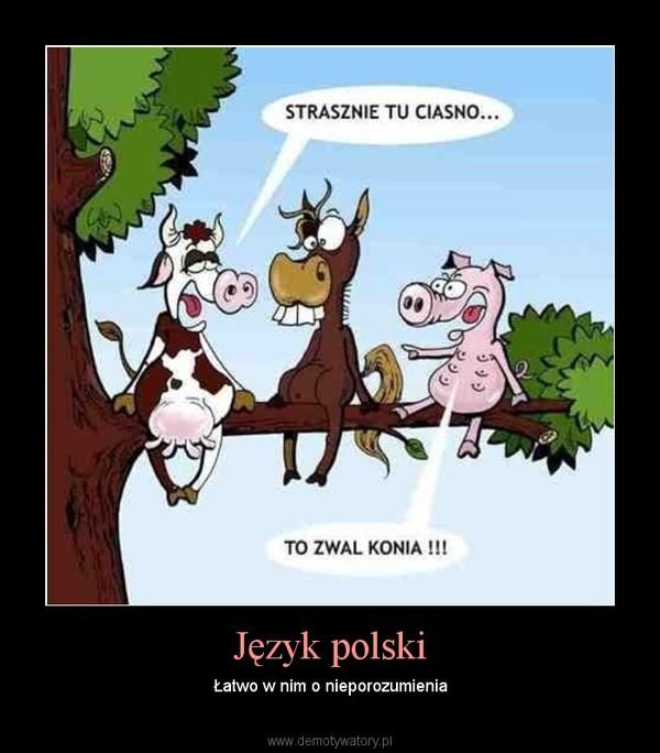 Język polski – Łatwo w nim o nieporozumienia