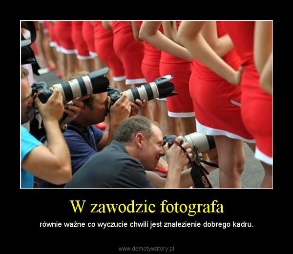 W zawodzie fotografa – równie ważne co wyczucie chwili jest znalezienie dobrego kadru.