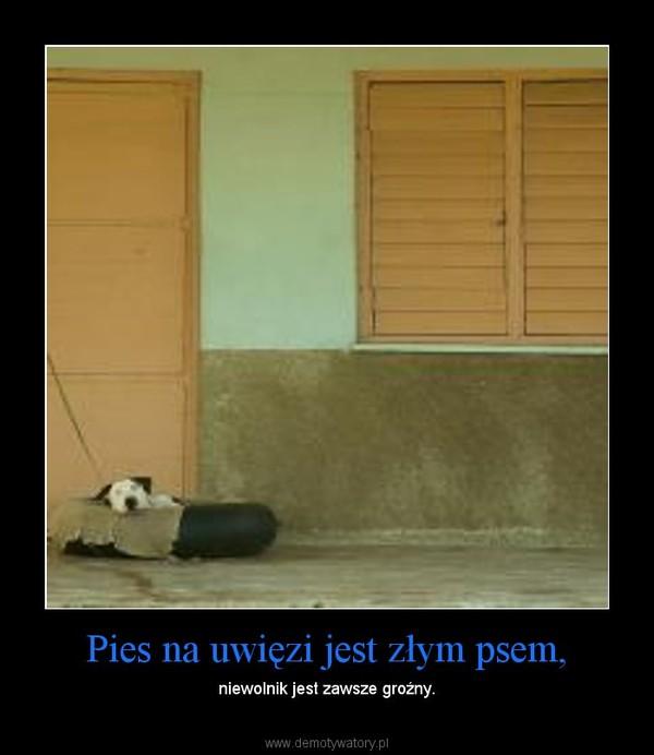 Pies na uwięzi jest złym psem, – niewolnik jest zawsze groźny.
