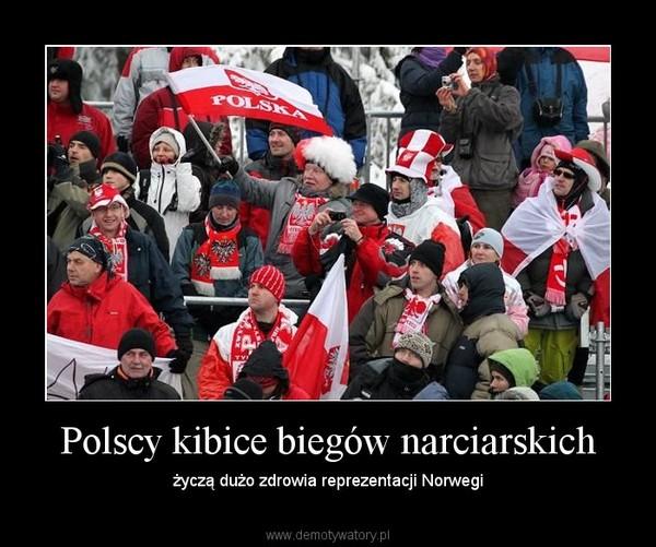 Polscy kibice biegów narciarskich – życzą dużo zdrowia reprezentacji Norwegi