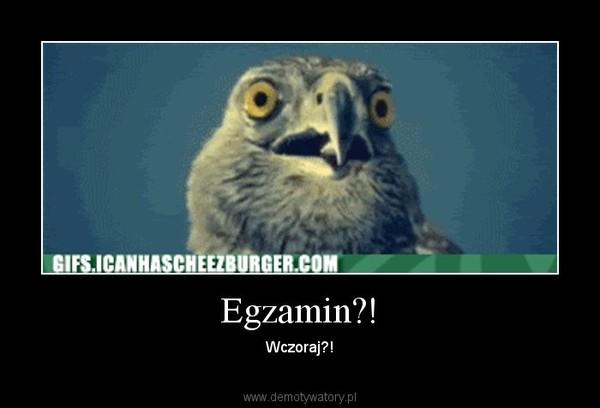 Egzamin?! – Wczoraj?!
