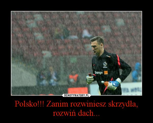 Polsko!!! Zanim rozwiniesz skrzydła, rozwiń dach... –