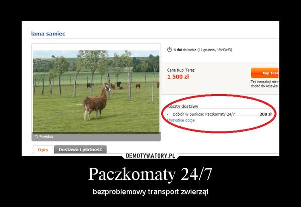 Paczkomaty 24/7 – bezproblemowy transport zwierząt
