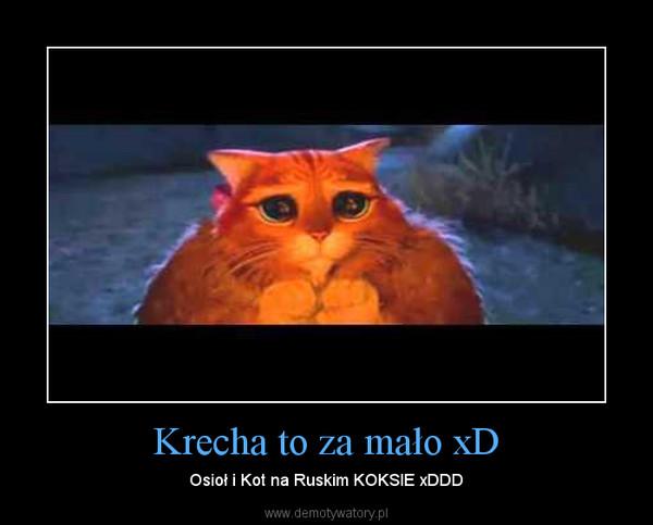 Krecha to za mało xD – Osioł i Kot na Ruskim KOKSIE xDDD