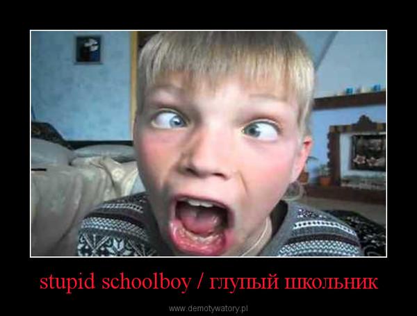 stupid schoolboy / глупый школьник –