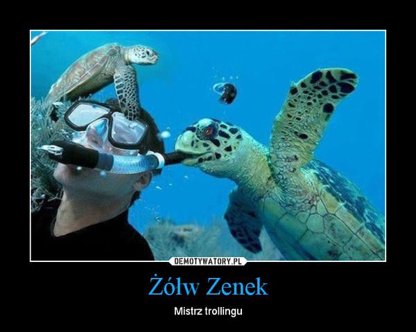 Żółw Zenek – Mistrz trollingu