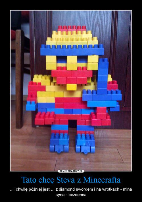 Tato chcę Steva z Minecrafta