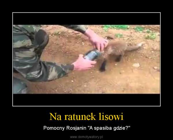"""Na ratunek lisowi – Pomocny Rosjanin """"A spasiba gdzie?"""""""