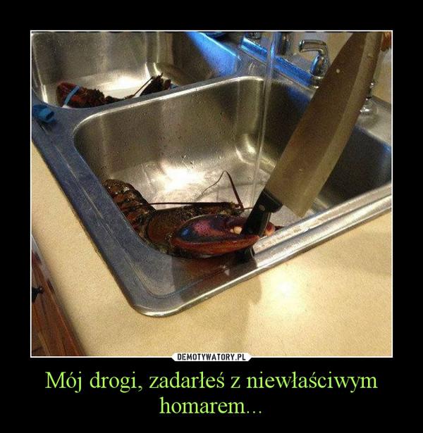 Mój drogi, zadarłeś z niewłaściwym homarem... –