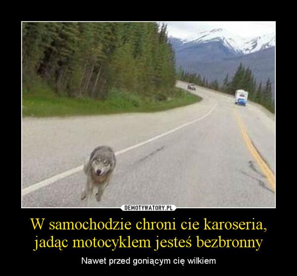 W samochodzie chroni cie karoseria, jadąc motocyklem jesteś bezbronny – Nawet przed goniącym cię wilkiem