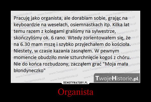 Organista –