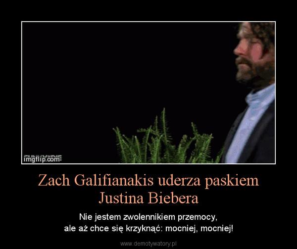 Zach Galifianakis uderza paskiemJustina Biebera – Nie jestem zwolennikiem przemocy,ale aż chce się krzyknąć: mocniej, mocniej!
