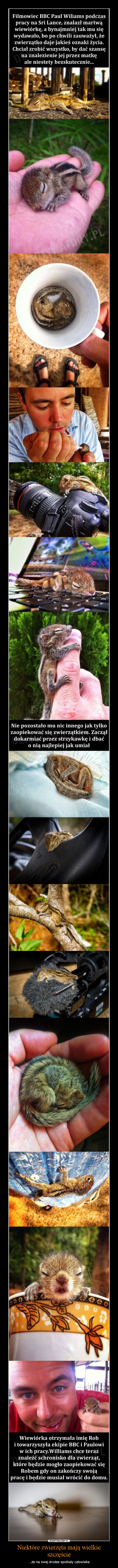 Niektóre zwierzęta mają wielkie szczęście – ...że na swej drodze spotkały człowieka