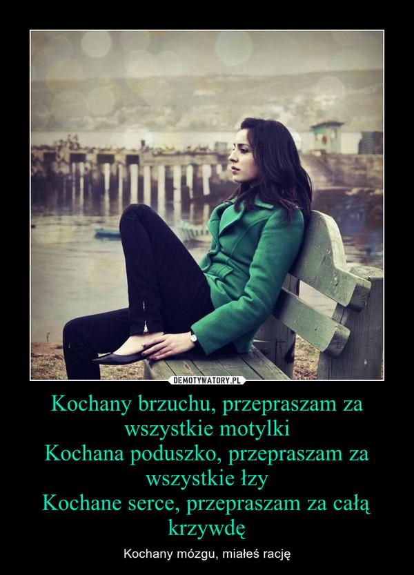 Kochany brzuchu, przepraszam za wszystkie motylkiKochana poduszko, przepraszam za wszystkie łzyKochane serce, przepraszam za całą krzywdę – Kochany mózgu, miałeś rację