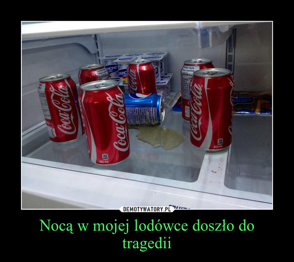 Nocą w mojej lodówce doszło do tragedii –