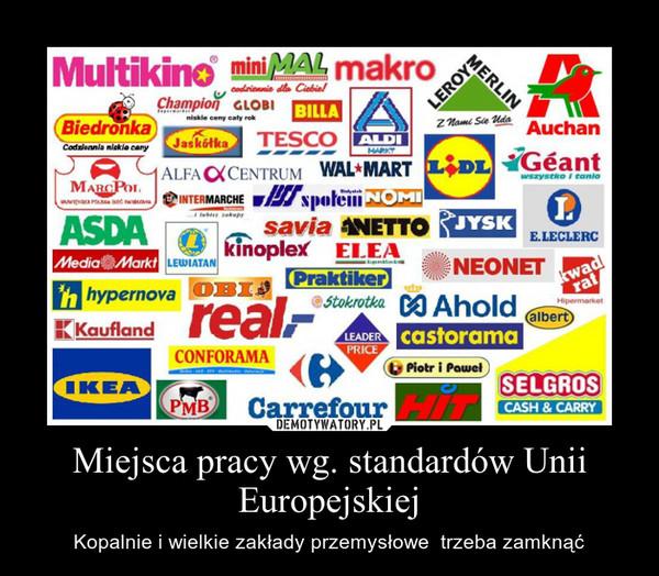 Miejsca pracy wg. standardów Unii Europejskiej – Kopalnie i wielkie zakłady przemysłowe  trzeba zamknąć