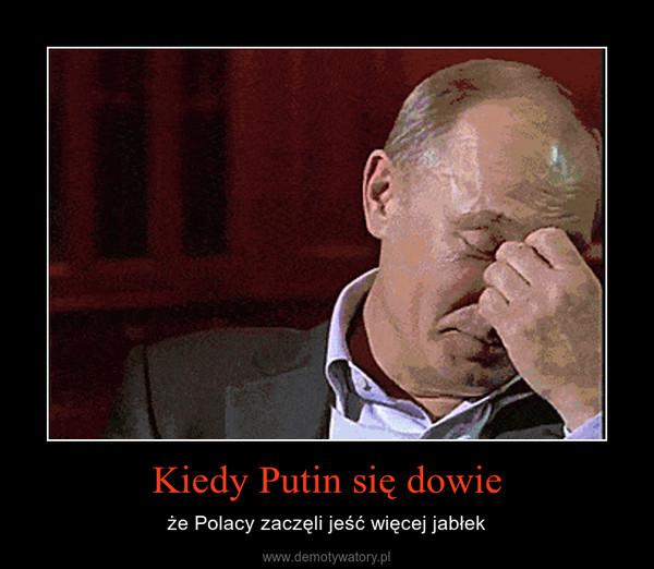Kiedy Putin się dowie – że Polacy zaczęli jeść więcej jabłek