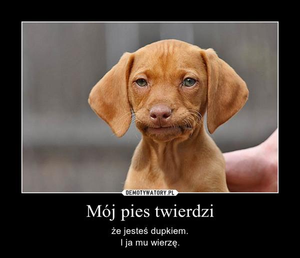 Mój pies twierdzi – że jesteś dupkiem.I ja mu wierzę.