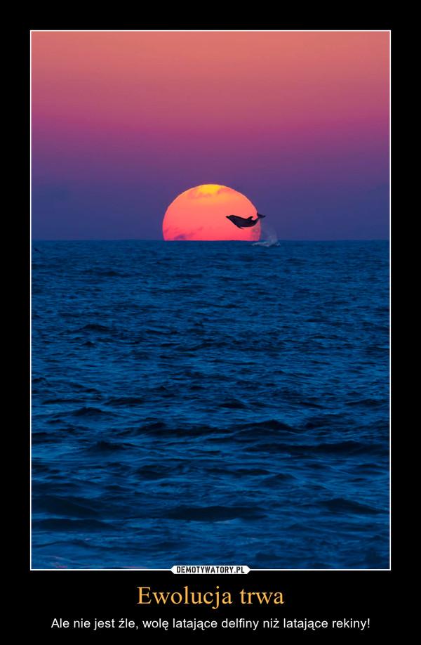 Ewolucja trwa – Ale nie jest źle, wolę latające delfiny niż latające rekiny!