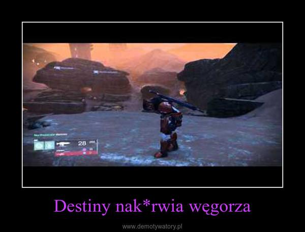 Destiny nak*rwia węgorza –