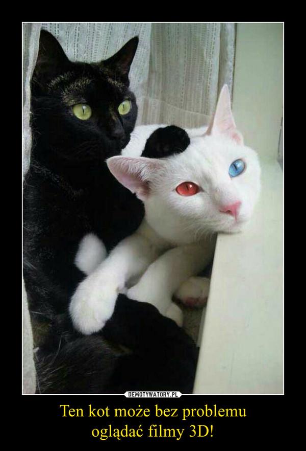 Ten kot może bez problemuoglądać filmy 3D! –
