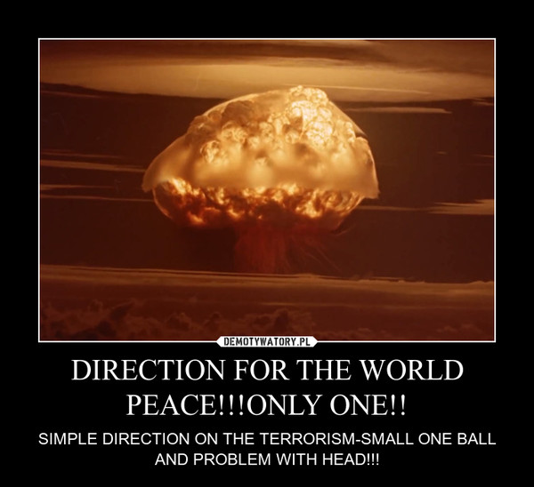 DIRECTION FOR THE WORLD PEACE!!!ONLY ONE!! – SIMPLE DIRECTION ON THE TERRORISM-SMALL ONE BALL AND PROBLEM WITH HEAD!!!