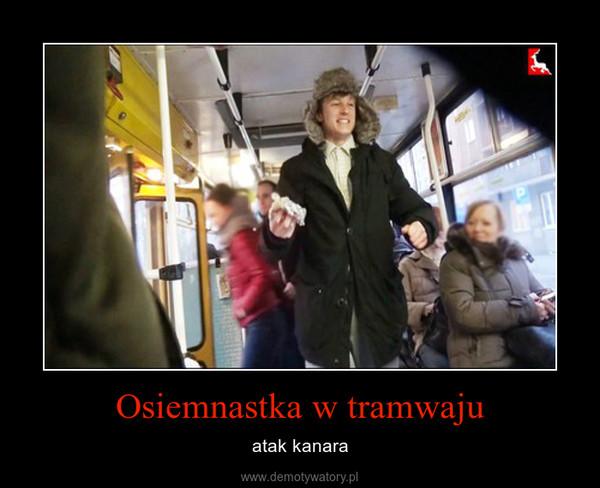 Osiemnastka w tramwaju – atak kanara