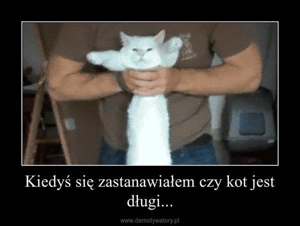 Kiedyś się zastanawiałem czy kot jest długi... –
