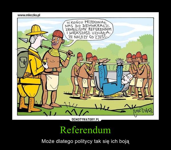 Referendum – Może dlatego politycy tak się ich boją