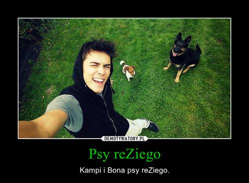 Psy reZiego