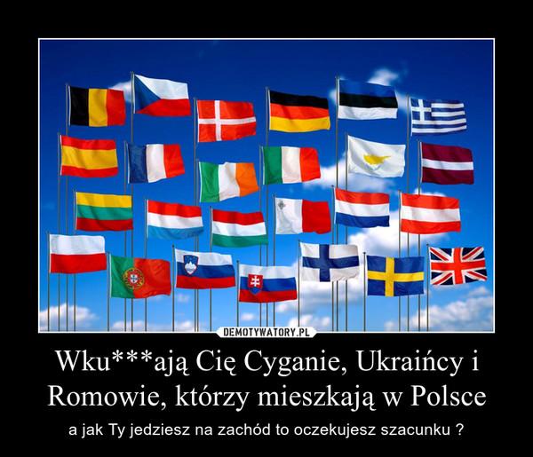 Wku***ają Cię Cyganie, Ukraińcy i Romowie, którzy mieszkają w Polsce – a jak Ty jedziesz na zachód to oczekujesz szacunku ?