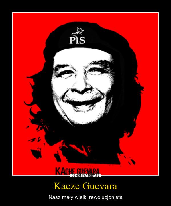 Kacze Guevara – Nasz mały wielki rewolucjonista