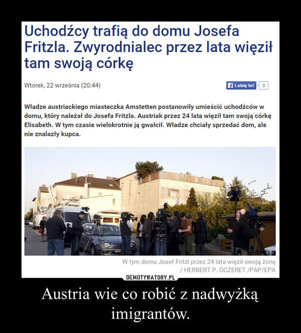 Austria wie co robić z nadwyżką imigrantów. –