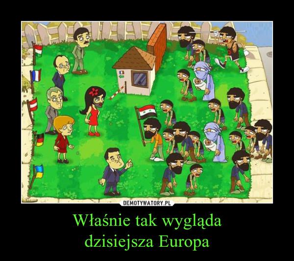 Właśnie tak wyglądadzisiejsza Europa –