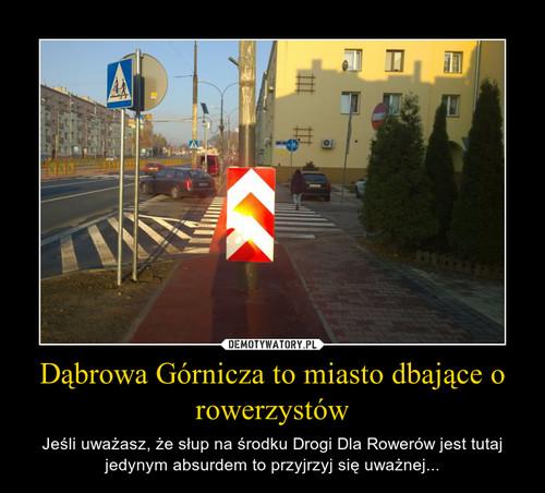Dąbrowa Górnicza to miasto dbające o rowerzystów