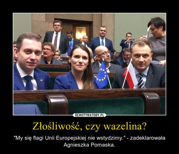 """Złośliwość, czy wazelina? – """"My się flagi Unii Europejskiej nie wstydzimy."""" - zadeklarowała Agnieszka Pomaska."""