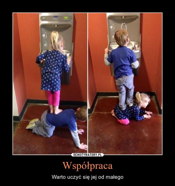 Współpraca – Warto uczyć się jej od małego