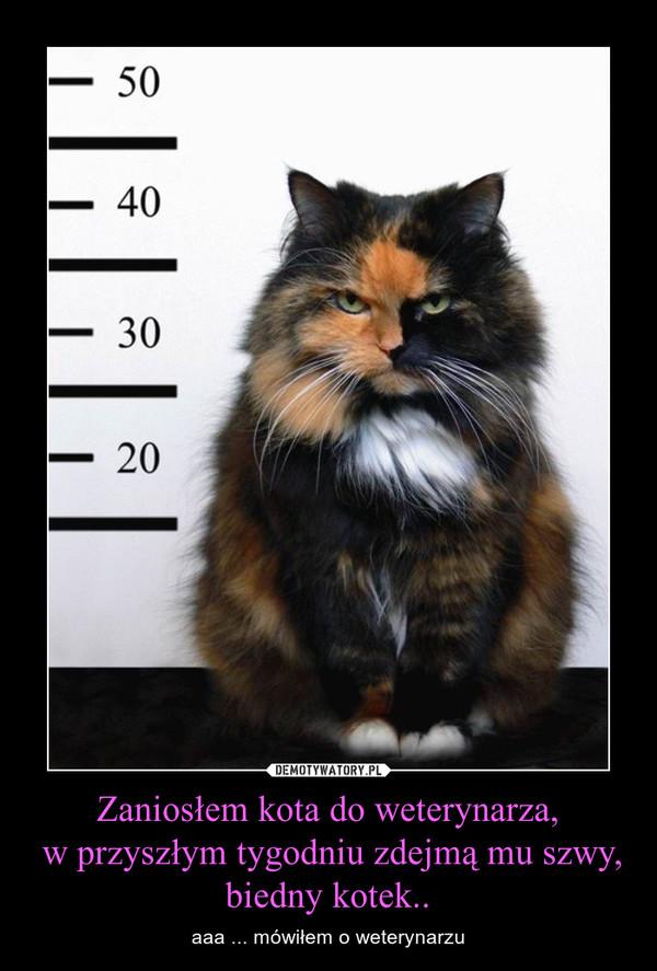 Zaniosłem kota do weterynarza, w przyszłym tygodniu zdejmą mu szwy,biedny kotek.. – aaa ... mówiłem o weterynarzu