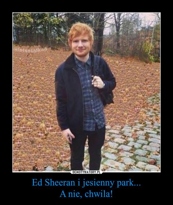 Ed Sheeran i jesienny park...A nie, chwila! –